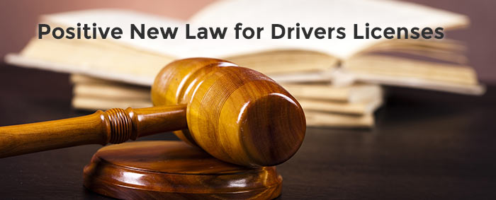 new drivers license law